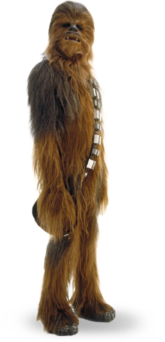 chewbacca_detail