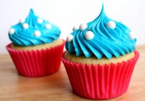 vanilla cupcake 2