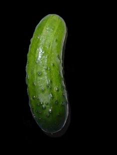 pickle b