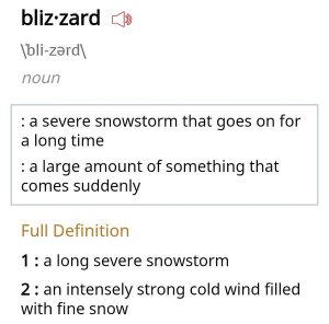 Definition of Blizzard
