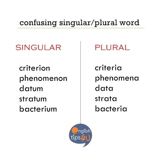 EngTrivia: Confusing Singular/Plural Word | @EnglishTips4U